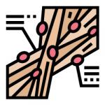 connective tissue icon